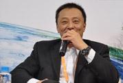 TCL副总裁李冰